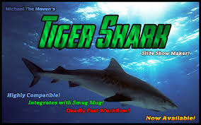 michael s tiger shark slideshow maker now available michael
