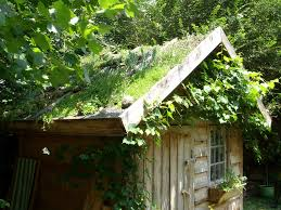 shed roof house greenroofs com projects ancaya green roof garden shed