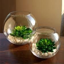 Flower Vase Decoration Home Best 25 Vase Fish Tank Ideas On Pinterest Betta Fish Bowl