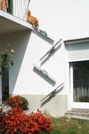 katzenleiter balkon details zu katzentreppe evoy katzentreppe aus