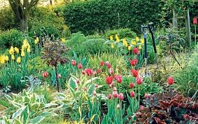 a guide to spring gardening telegraph