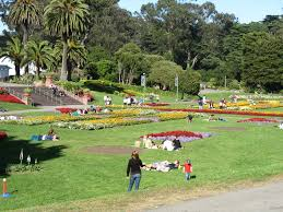 Botanical Garden Golden Gate Park Sf Botanical Garden The Price Of Admission Be Seated