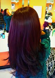 plum hair colors in 2016 amazing photo haircolorideas org