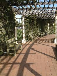 85 walkway ideas and designs for 2017 pictures the vines wrap around the structure and create shadows for a gorgeous shaded walkway