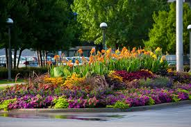 Flowers Gardens And Landscapes by Floriculture Blackjack Horticulture