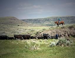 engwis ranch fay ranches