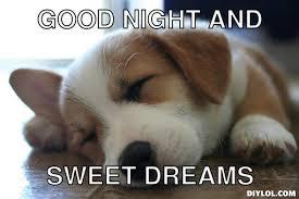 Good Nite Memes - 20 cutest goodnight memes sayingimages com