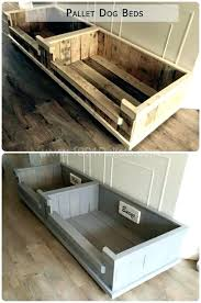 Bunk Bed For Dogs Wooden Bed Plans Pet Bunk Bed Plans To Build Bed Pallet