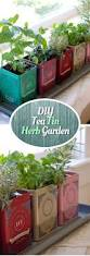 15 cool diy ways to start an indoor herb garden gardens tea