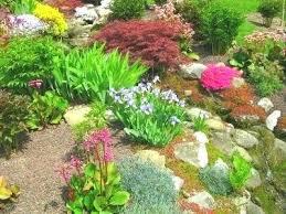 Rock Garden Plan Partial Sun Garden Plan Rock Garden Plants Partial Sun Rock Garden