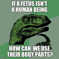 Fetus Meme - philosoraptor meme imgflip