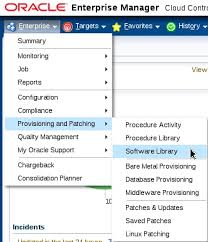 adding entities component to the software library in oracle