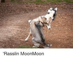 Moon Moon Meme - moonmoon and moonmoon meme on me me