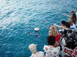 scattering ashes at sea sunset memorial gravesite
