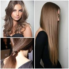 hair color for dark hair to light the smoky brown hair copy my style pinterest brown long brown