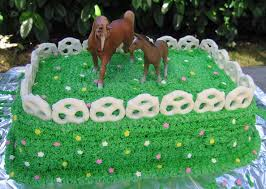 how to make a cake for a girl 344 best western and rodeo cakes images on western