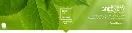 Color Of Year 2017 by Pantone Color Chips And Color Guides For Accurate Color