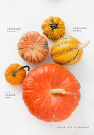 Home Decorators Catalogue Unique Pumpkin Decorating Ideas Cheap For The Home Decorating