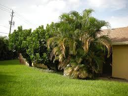 listing 4995 regina court 8a west palm beach fl mls rx