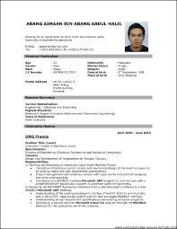 good resume format pdf resume pdf file europe tripsleep co