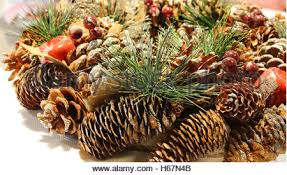 Decorating Pine Cones With Glitter Xmas Christmas Table Centrepiece Decoration Decorations Stock