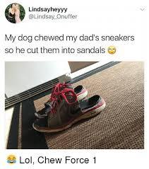 Sneakers Meme - 25 best memes about sneakers sneakers memes