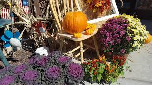 a garden for all seasons lomond view nursery