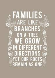 top 25 family quotes and sayings quoteshumor com