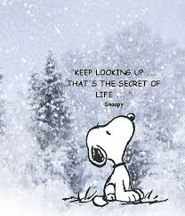 16 snoopy images