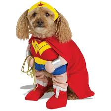 Cute Dog Halloween Costumes 10 Big Dog Halloween Costumes Images Pet