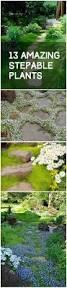 best 25 garden paths ideas on pinterest garden path pathway