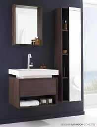 small bathroom furniture ideas astounding cabinet ideas for small bathrooms photos best
