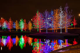 your holiday guide to tree lighting celebrations in dallas and