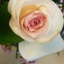 phoenix flower shops 11 reviews florists 737 e broadway rd