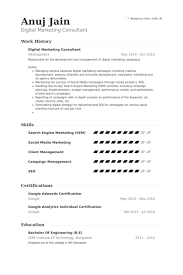 Hr Consultant Resume Sample by Digital Marketing Consultant Resume Samples Visualcv Resume
