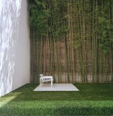 Architecture Side Yard Garden Modern Urban House Design With