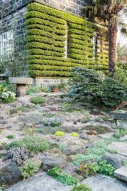 carole drake the paved garden features a small rockery stone
