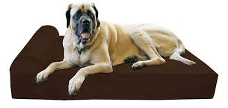best dog beds for large dogs 2018 reviews u0026 buying guide