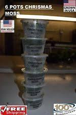 live aquarium moss plants ebay