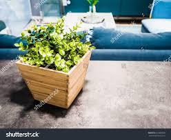 home decoration idea artificial plants wooden stock photo