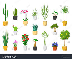 big set indoor house plants pot stock vector 622354613 shutterstock
