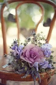 27 best ornamental cabbages images on ornamental