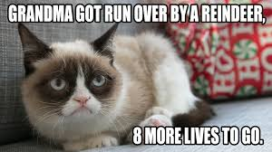 Grumpy Cat Christmas Memes - grumpy cat christmas card christmas lights decoration