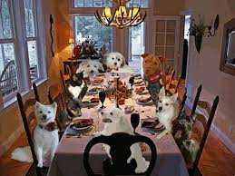 dogs at dinner table majestic paws chicago dog walking pet sittingfall food happy