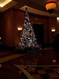 christmas trees u2013 fief loves travel