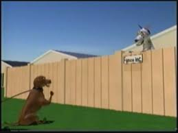 Estimates For Fence Installation by Citywide Fence Company Wood Fence Estimates Installation And