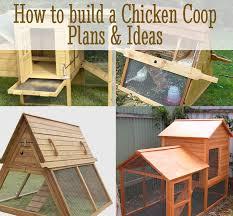 diy chicken coop plans u0026 ideas diy for life