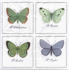 decoupage napkins of vintage butterflies u2013 chiarotino