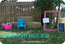 interior design horse themed birthday party decorations good