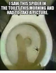 Meme Saw - i saw this spider in the toilet thismorning and hadto takeapicture